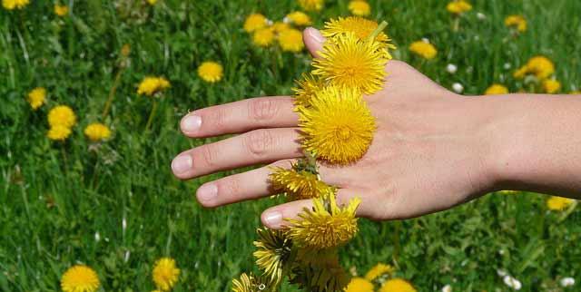 Oblik dlana i prstiju otkriva kakvi ste!