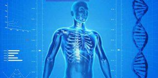 100 zanimljivih činjenica o ljudskom telu
