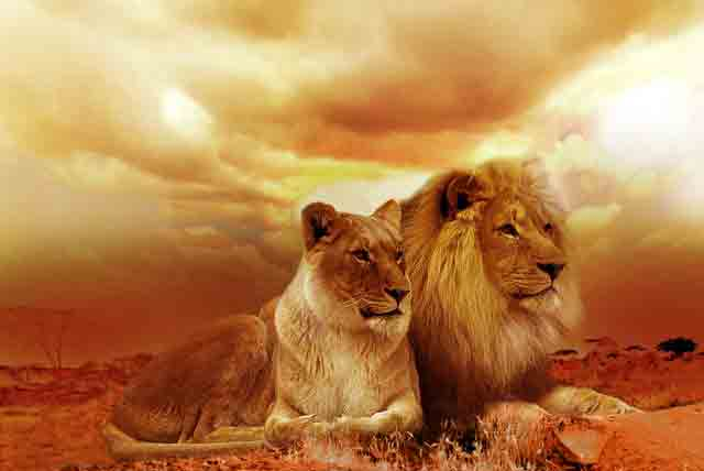 Sanjati životinje