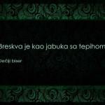 izreke i citati