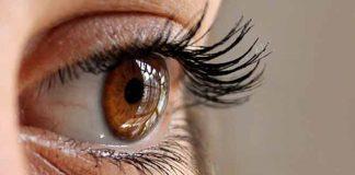 ljudskom oku