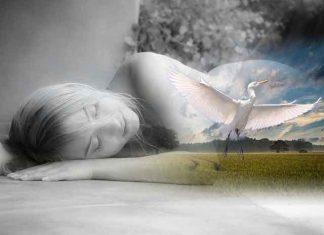 sanovnik snovi šta znači sanjatii