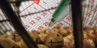 HOROSKOP I LOTO: Koji je vaš srećan broj?