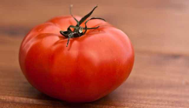 ZIMNICA OD PARADAJZA zimnica-od-paradajza---5