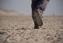 PRELEPA POUČNA PRIČA: Tragovi u pesku