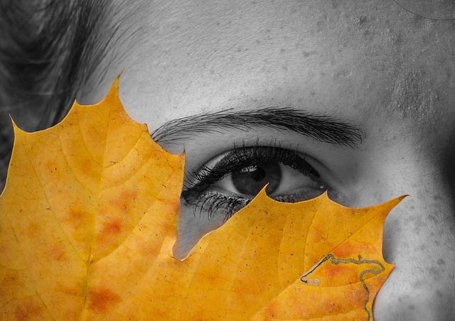 eye-989725_640