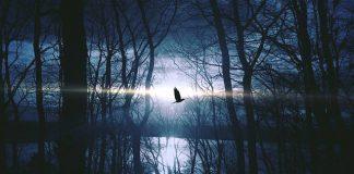 SUTRA JE BOGOJAVLJENSKA NOĆ: Ako dočekate ponoć budni, dogodiće vam se DIVNA STVAR!