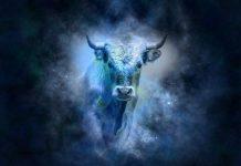 uporedni horoskop bik