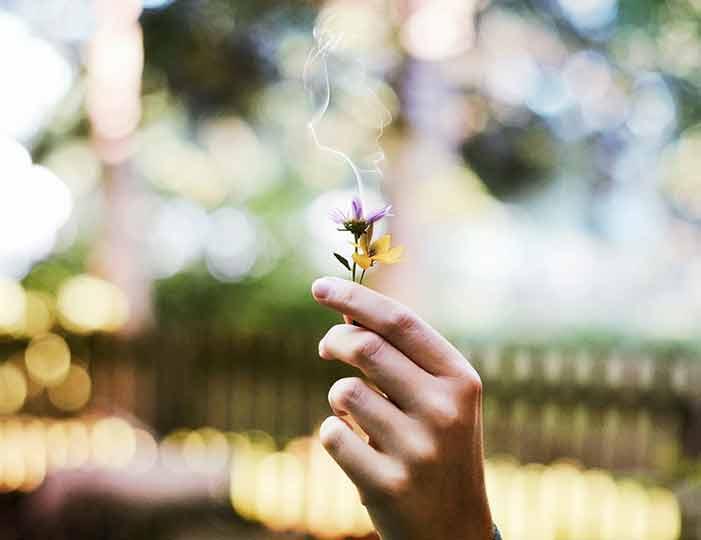 Da ti prdež miriše kao ruža