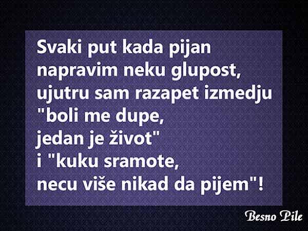 besnopile-rs-8