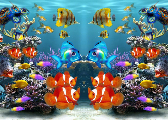 Akvarijum zagonetka