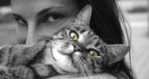 MAČKE IPAK VIŠE VOLE DAME: Kakva je to tajna veza između žena i mačaka?