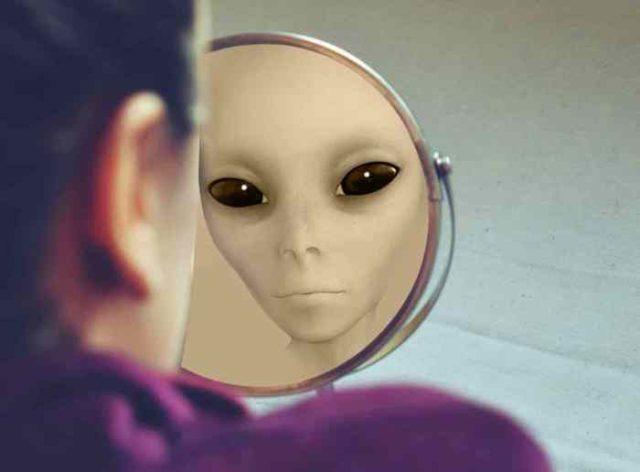 VREBAJU PRERUŠENI U LJUDSKA BIĆA: Proverite da li je vaš komšija vanzemaljac pomoću ovih 6 detalja!
