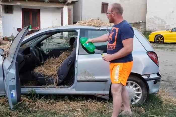 Još jedan sugrađanin zapalio svoj auto zbog tehničkog pregleda: Mihajlo je napunio kola senom i polio ih benzinom! (VIDEO)