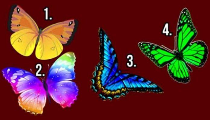 Otkrij tajne svoje duše: Izaberi leptira koji te najviše privlači, on nosi vrlo bitnu poruku za tebe